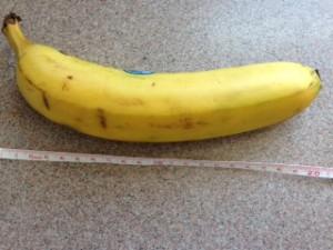 バナナの長さ