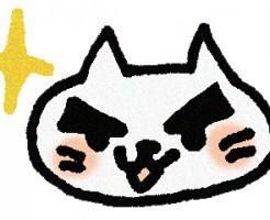 眉毛の濃い猫